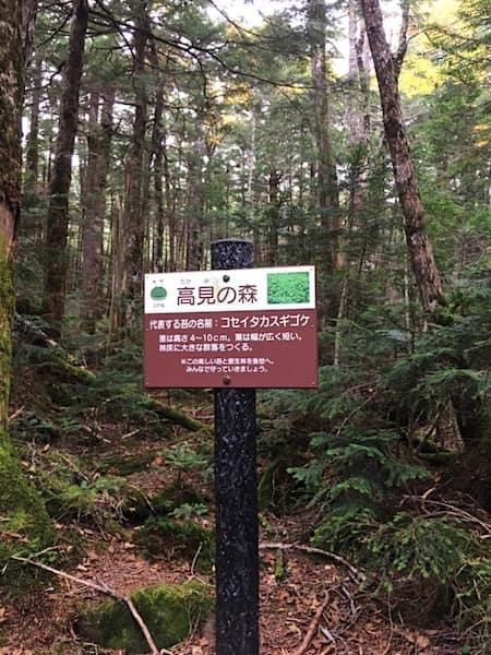 高見の森の入口