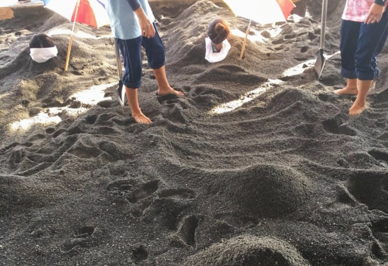 砂むしを体験する砂場とスタッフの方達