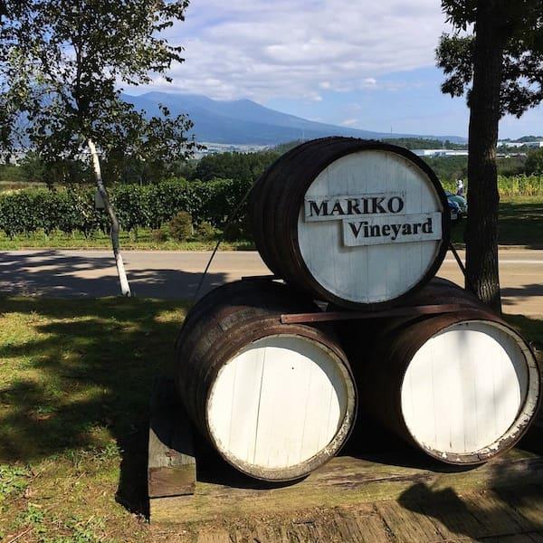 上田のワイン畑