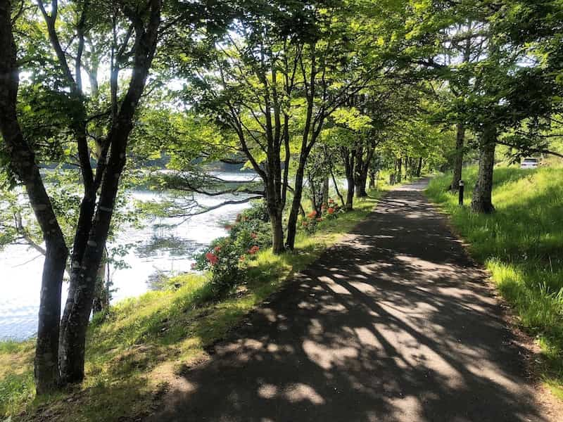 女神湖の周りの遊歩道