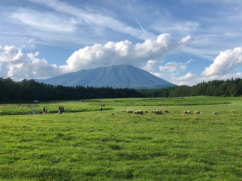 小岩井農場から眺める岩手山