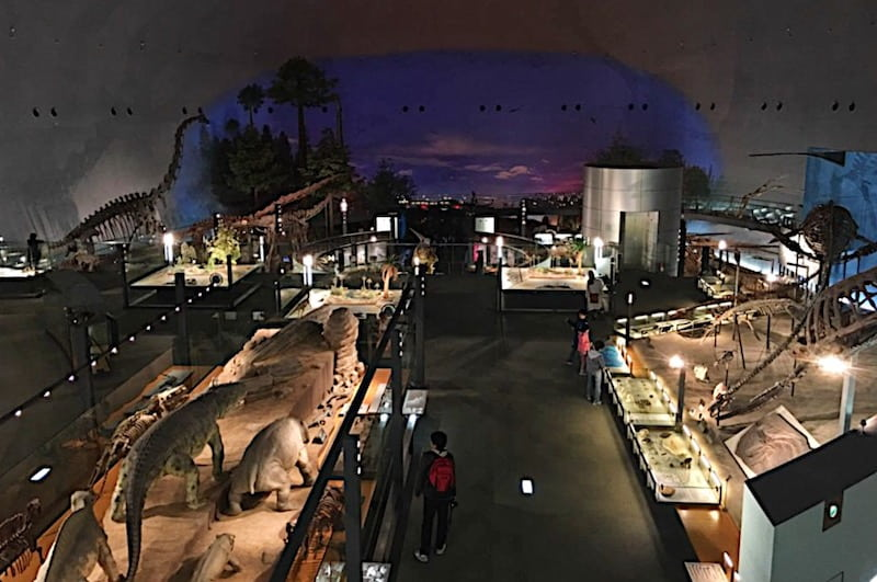 雨の日でもウォーキングできる恐竜博物館