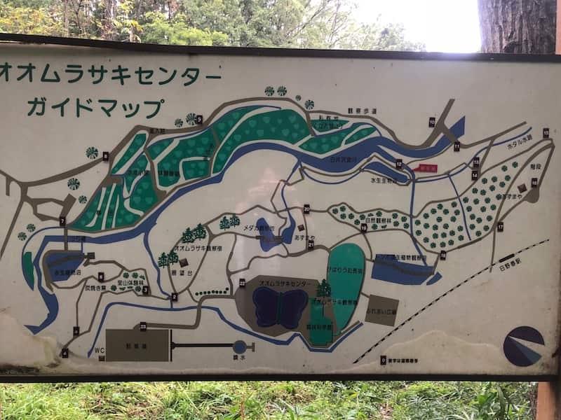オオムラサキセンターガイドマップ