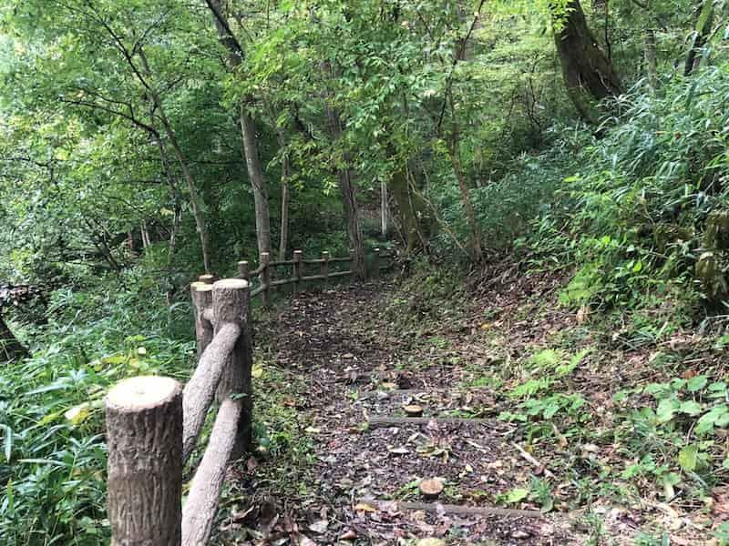 自然観察林
