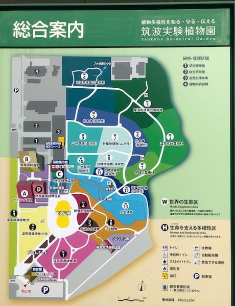 筑波実験植物園の園内マップ